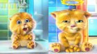 My Talking Ginger | Twinkle Twinkle Little Star & English Children's Songs