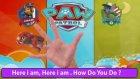 Paw Patrol Finger Family Song | Finger Family Song For Children & English Children's Songs