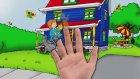 Caillou & Finger Family | Children's Song