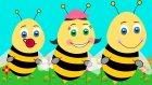 En Çok Dinlenen 5 Çocuk Şarkısı Bir Arada