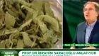 Kan şekerini dengeleyici bitki - İbrahim Saraçoğlu