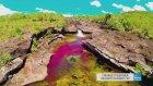 Cennete Doğru Akan Dünyanın En Güzel Nehri: Cano Cristales