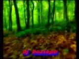 dj boztepe senle acamam (2009)