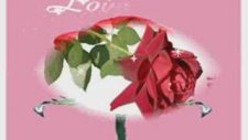 Emirkan Demet Akalın Sevgililer Gününde GüLbiye Orhan 26