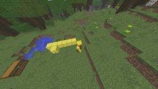 Minecraft STEVE HAKKINDA BİLMEDİĞİNİZ 7 SAÇMA SAPAN BİLGİ !!