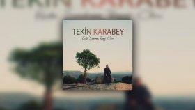 Tekin Karabey - Aşk