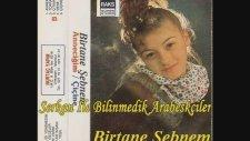 Birtane Şebnem - Annem