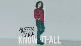 Alessia Cara - Stone ft. Sebastian Kole