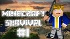 Minecraft: Survival - Bölüm 1 - Yeni Bir Başlangıç