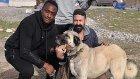 Eneramo: 'Beşiktaş'a gol atarsam, köpeklerime hediye edeceğim'