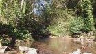 Ordu Karaoluk Köyü - Doğa Videoları - 11