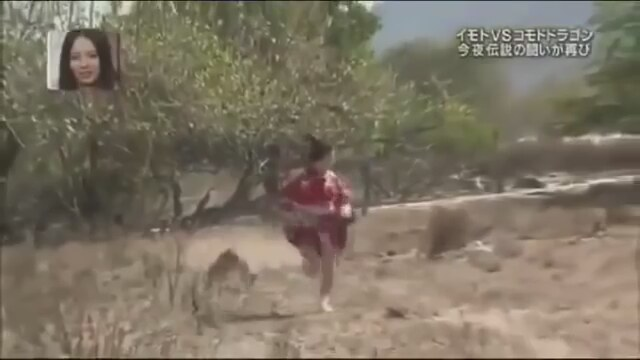 Komodo Ejderi Kadına Saldırıyor
