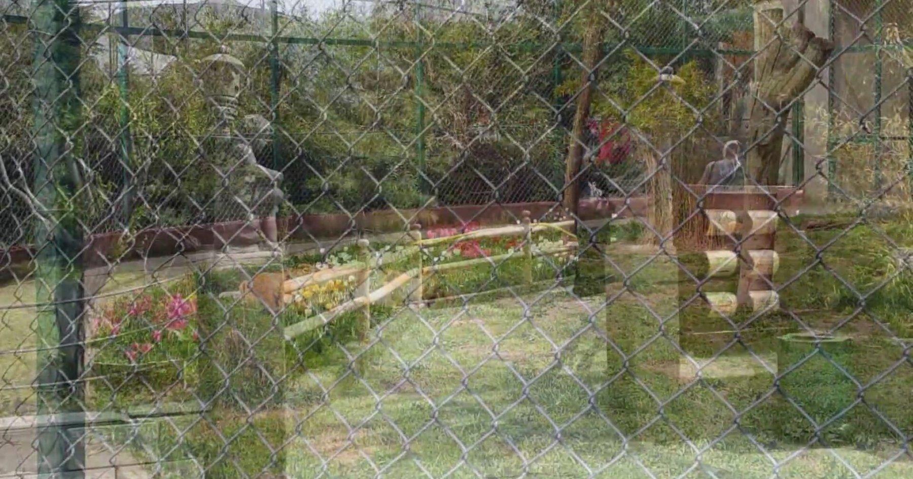 Darıca Hayvanat Bahçesi / Faruk Yalçın Zoo Darıca ...