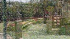 Darıca Hayvanat Bahçesi / Faruk Yalçın Zoo  Darıca / Kocaeli