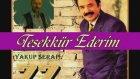 Ferdi Tayfur - En Güzel şarkıları- 42 Adet Mix