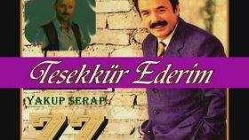Ferdi Tayfur - En Güzel şarkıları- 42 Adet