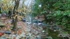Doğaseverlerin gizli cenneti: Ballıkayalar