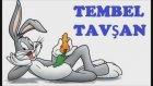 Tembel Tavşan Masalı dinle - Masal oku