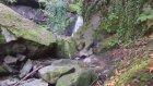 Ordu Karaoluk Köyü - Doğa Videoları - 20