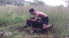 Silahsız Vahşi Hayvanları Yakalamak