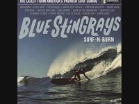 Blue Stingrays - Malibu Babylon