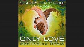 Shaggy - Only Love Ft. Pitbull, Gene Noble