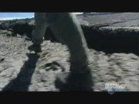 Bear Grylls'in Yalan Dolan Çıkması