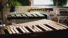 Müzik aletleri öğrenmek