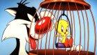 Sylvester and Tweety 3. Bölüm (Çizgi Film)