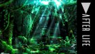#Speed Art Photoshop CC 2015 - After Life