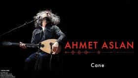 Ahmet Aslan - Cane