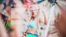 Electro & Dance Mix 2015      Turn Up The Volume!