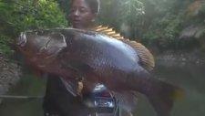 Büyük balık avı