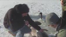 Buzdan Çıkan Büyük Balık Avı