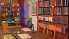Feriştah'ın Kütüphane Fantezisi