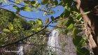 Ordu Karaoluk Köyü - Doğa Videoları - 33
