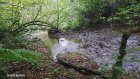 Ordu Karaoluk Köyü - Doğa Videoları - 59