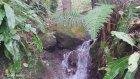 Ordu Karaoluk Köyü - Doğa Videoları - 61