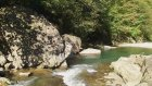 Ordu Karaoluk Köyü - Doğa Videoları - 62