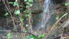 Ordu Karaoluk Köyü - Doğa Videoları - 65
