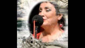 Fatma Arslanoğlu - Şimdi Uzaklardasın Gönül Hicranla Doldu