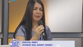 Feryal Öney-Kırmızıgül Demet Demet