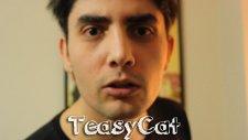 TeasyCat Tanıtım Videosu