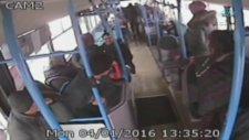 Üşüyen köpek otobüse bindi