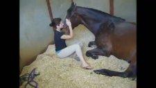 atla kadının inanılmaz bağı