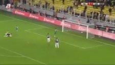 Robin van Persie'den klasına yakışır gol
