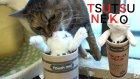 Funny Cats İn Toy Hilarious Reactions / Oyuncaktan Korkan Kediler