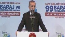 Cumhurbaşkanı Erdoğan'ın İmalı Greenpeace Esprisi
