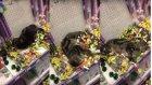 En Güzel Yere Giren Kedi Mağazanın Altını Üstüne Getirdi