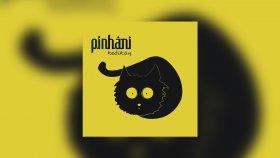 Pinhani - Zor Gunler